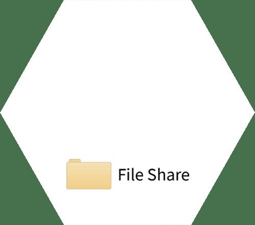 Logo | Hexagon | File Share