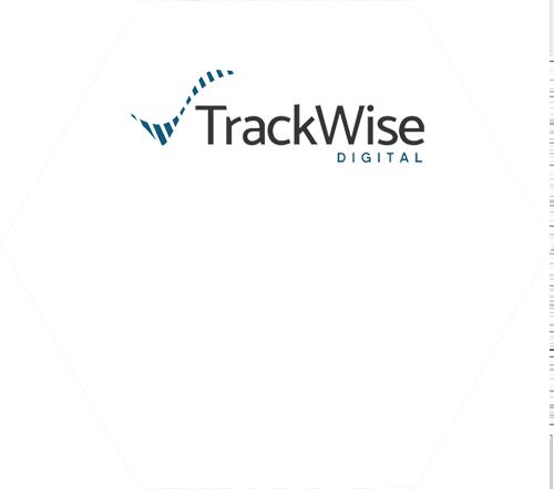 Logo | Hexagon | Sparta TrackWise Digital