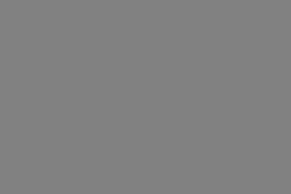 Certificate | AIIM | Leadership Council | Gray